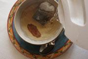 Preparação da imagem Panax Ginseng Tea