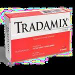Традамик