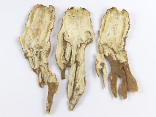 dried root of the Chinese crown